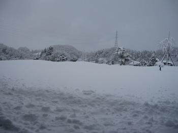 雪①.JPG