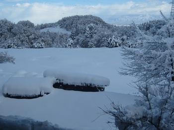 雪③.JPG